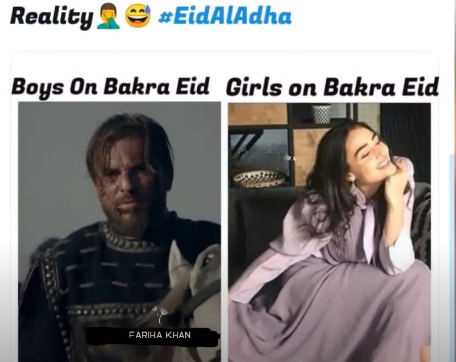 Special funny quotes on Bakra Eid 2021